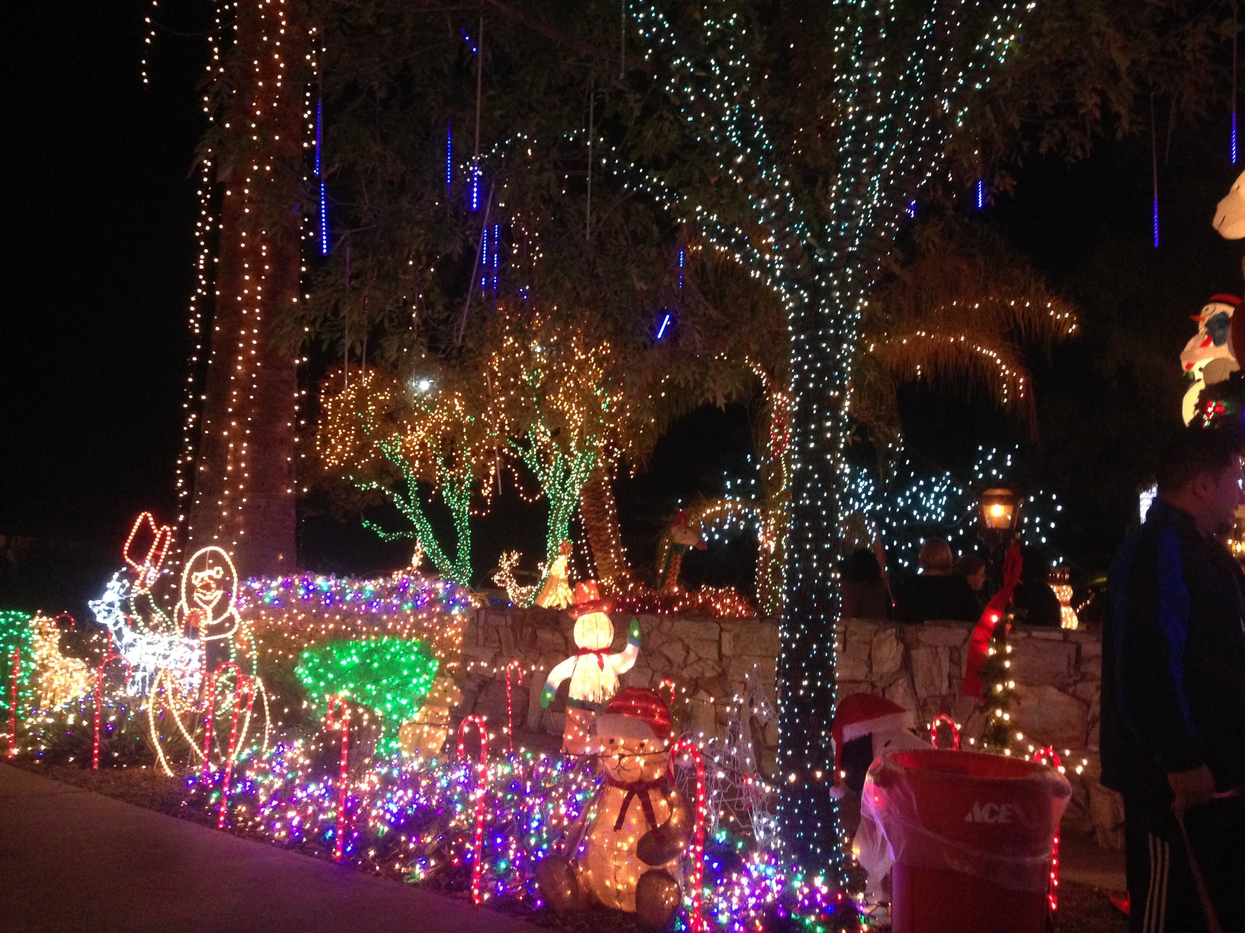 Lee And Patricia Sepanek Decorated Their Arcadia Home With 250,000  Christmas Lights For Decades.