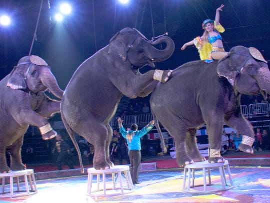 An elephant act will be on display when the circus comes to Sheboygan on May 30.