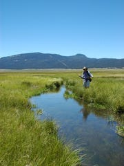 An angler fly fishing along the East Fork of the Jemez