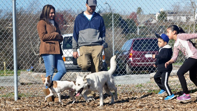 Parents watch as young Jorge and Jaylene Escobedo chase their dog Kobe and Eddie, a fox terrier, around the perimeter of the new dog park in Salinas.