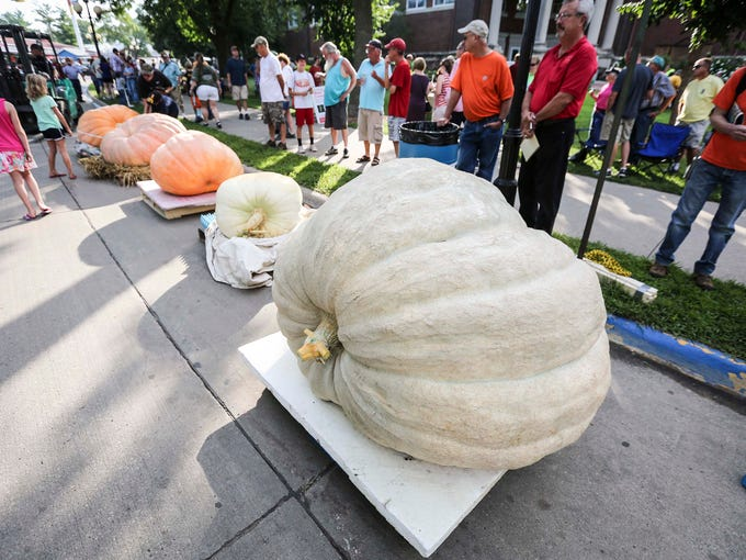 Fairgoers check out the Big Pumpkin Contest at the