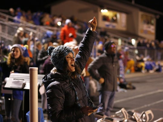 An Amherst fan cheers after a touchdown during a WIAA Division 5 second-round playoff game between the Falcons and Spencer/Columbus Catholic last Friday in Amherst.