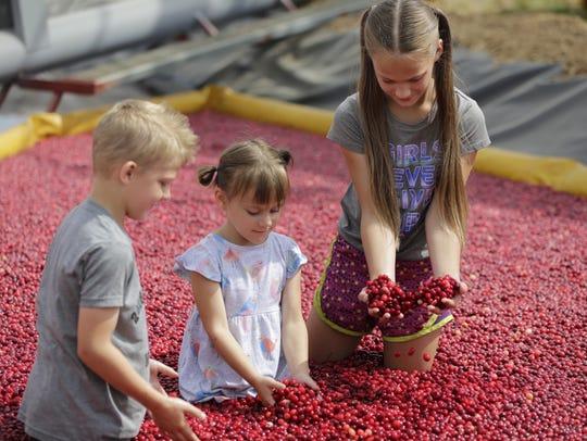 Jakob, 5, Aria, 3 and Erika Sleznikow, 9, of Marshfield