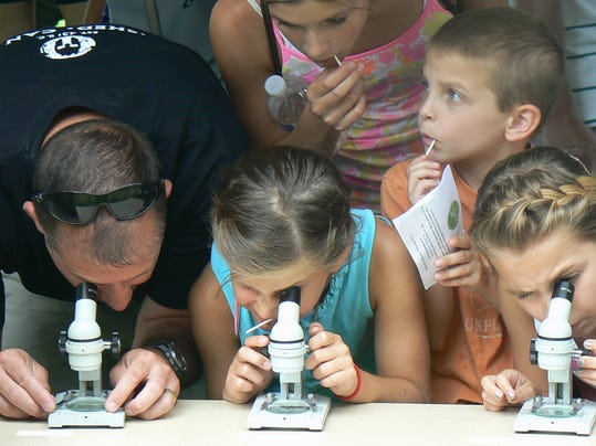 Viewing insects at the 2013 Butterfly Festival.JPG