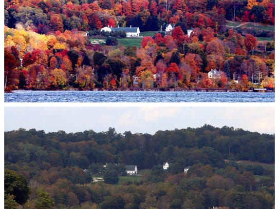How the leaves looked in Westchester County on Oct.