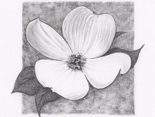 """""""Dogwood"""" is one of the drawings by local artist Sarah"""
