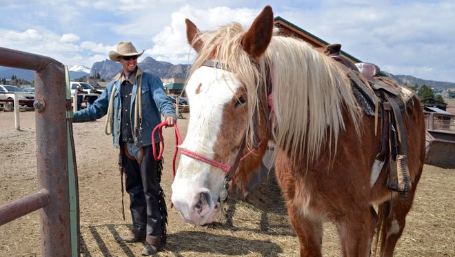 Wrangler Kyle Rood leads Joker, a Belgian draft horse, for a ride at Sombrero Ranches riding stables in Estes Park, Colo.