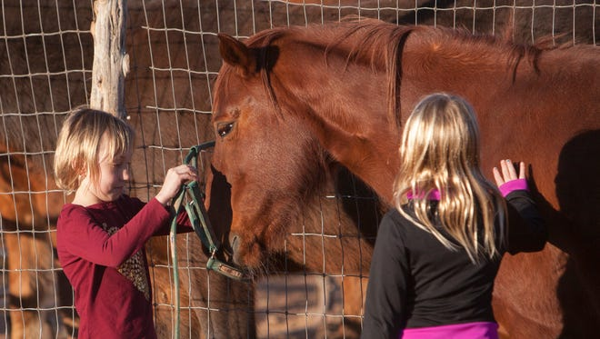 Under the direction of Kena Frey, children learn to instruct and care for horses in order to develop communication and motor skills Friday, Jan 15, 2016.