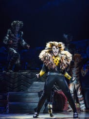 Tyler Hanes, appearing as Rum Tum Tugger in the Broadway