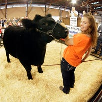 Grand Champion Market Beef is in the ring with owner Tori Kohlwey at the Sheboygan County Fair Thursday September 3, 2015 in Plymouth.