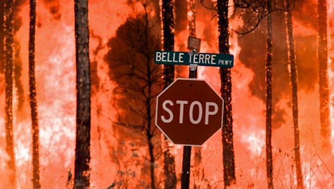 A backfire, set by U.S. Forest Service officials to stop another advancing fire, rages July 3, 1998, in the Indian Trail neighborhood of Palm Coast.