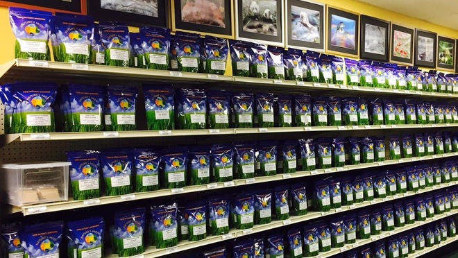 A display of the dozens of botanical powders available at Nature's Mojo in Ledgewood.