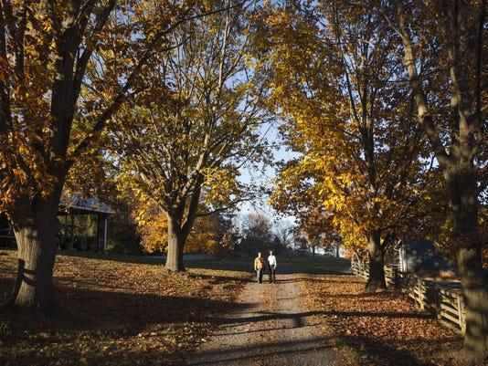Pipelne property in Churchville
