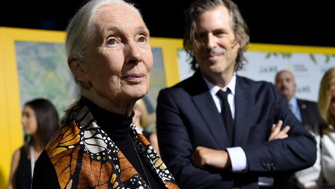 """Jane Goodall, left, speaks as director Brett Morgen looks on at the Los Angeles premiere of """"Jane"""" at the Hollywood Bowl on Oct. 9, 2017, in Los Angeles."""