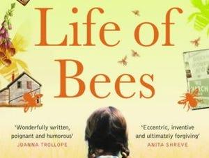 secret life of bees chapter 14 pdf