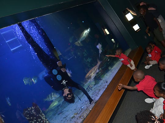 James Hill, aquarist at the Mississippi Museum of Natural Science, entertains a group of children from Hinds Community College Daycare in Utica as he feeds the various species of fish inside the 100,000-gallon aquarium.