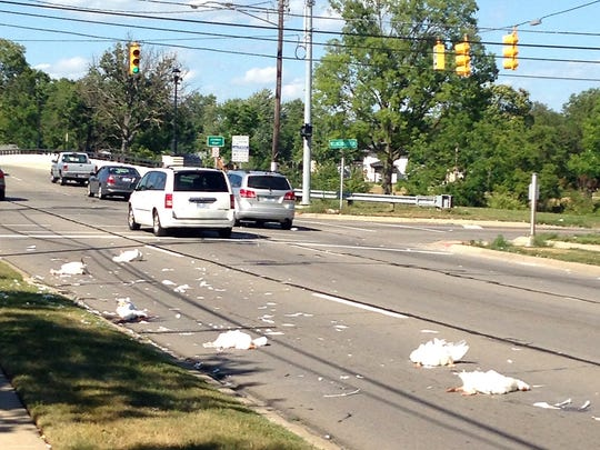 Dead geese lie on Gratiot in Clinton Township after being hit by an SUV.