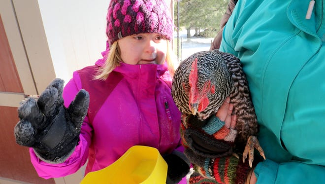 Emily Little of Lake Mills meets one of the chickens she just fed at Zachariah's Acres, an outdoor recreation and nature destination designed for kids with special needs and their families at N74 W35911 Servants' Way in the town of Oconomowoc.
