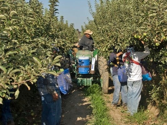 UC-ANR-Apple-pickers.jpg