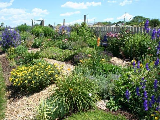 Sun Perennial Demonstration Garden on Franklin Farm Lane