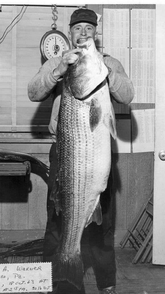 James A. Warner, Hatboro, Pennsylvania, holds up his 48-pound, 3-ounce striped bass caught in the 1963 Long Beach Island Surf Fishing Classic, then known as the Striped Bass Derby.