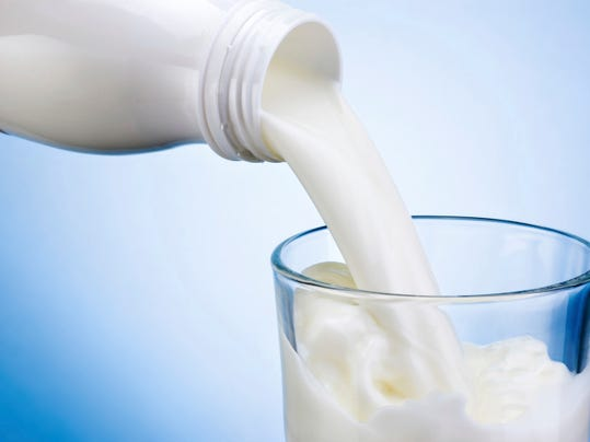 value of dairy industry in rajasthan