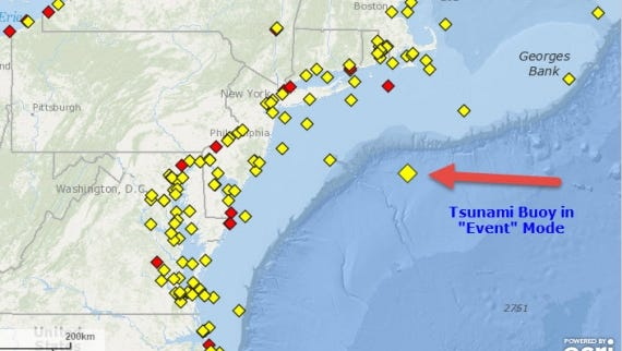 Map shows the tsunami buoy that was triggered over the weekend.