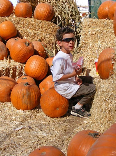 "Head to Vertuccio Farms for a variety of fall activities. Admission to this festival includes a 5-acre corn maze, mini golf, a mini zip line, a &ldquo;new and improved&rdquo; barrel train ride, extreme air pillow, spider web climb and pumpkin bowling. The farm is also selling pumpkins, hay bales and corn stalks all&nbsp;month. |&nbsp;<strong>Details:</strong>&nbsp;Through Sunday, Nov. 3. 9 a.m.-9 p.m. Mondays-Thursdays; 9 a.m.-10 p.m. Fridays and Saturdays; 10 a.m.-6 p.m. Sundays. Vertuccio Farms, 4011 S. Power Road, Mesa. $10 per person, free for kids 2 and younger, $30 for season passes. <a href=""https://vertucciofarms.com/"" target=""_blank"">vertucciofarms.com</a>."