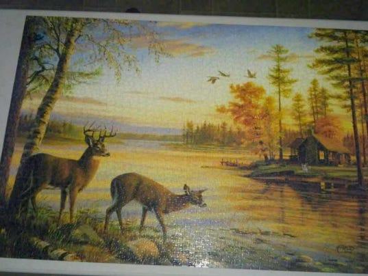 636199035090818086-puzzle.jpg