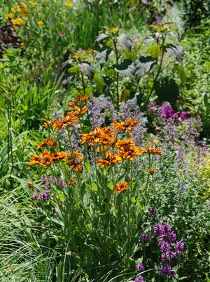 Take care of your perennials in fall.