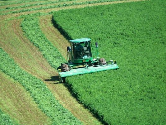 WSF-0916-Carole-Crops.jpg