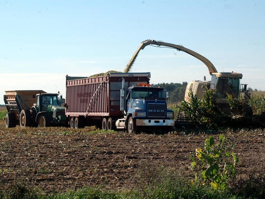 Corn silage is one of the easier forage values to calculate because its value is based on corn grain, which is regularly traded on the market.