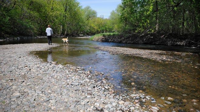 Rebekah Holmes enjoys a sand bar on the Sauk River with her dog Wednesday at Sauk River Regional Park in Sartell.