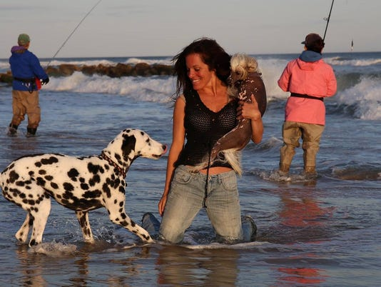 636517890538765928-0125-JCNW-surf-and-dog-LisaJaySaf---Copy.jpg