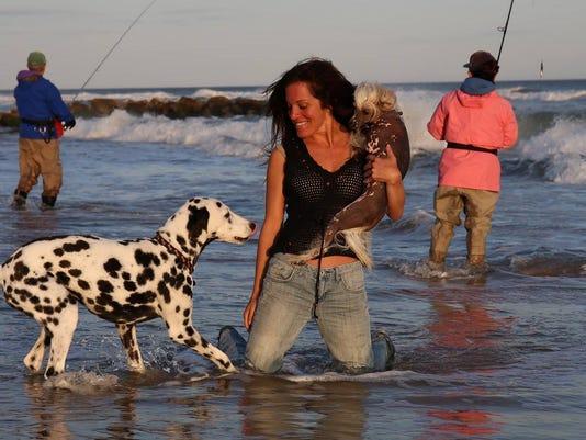 636517890538765928-0125-JCNW-surf-and-dog-LisaJaySaf---Copy.jpg