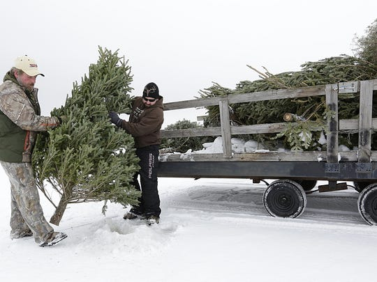 Scott Scharfenberg and Dave Renderman of Foot of the Lake Fishing Club in Fond du Lac placed old Christmas trees Saturday into holes on Lake Winnebago to outline where a plowed ice road extends.