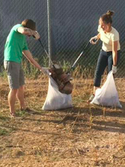Volunteers push trash deep into garbage bags and they
