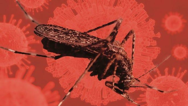 Mosquito-borne Zika virus