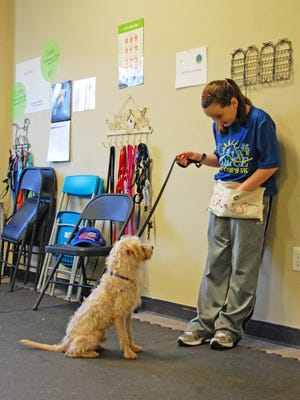 """The obedience training provided at """"Pawsitive"""" Kids Camp helps Brooke's Legacy find adoptive homes for rescued pets."""