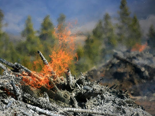 In this Friday, Nov. 3, 2017, photo, flames consume a slash pile at the Frisco Peninsula during the Annual Forest Collaboratives Summit in Frisco, Colo. The infestation of the Mountain Pine Beetle, which overran Colorado's central mountain region in 2005, has destroyed trees throughout the region. (Hugh Carey /Summit Daily News via AP)