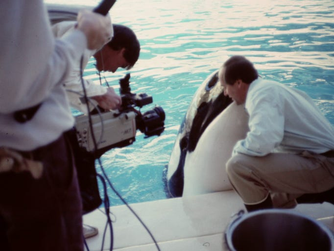 Rothmiller working with a killer whale on his ESPN