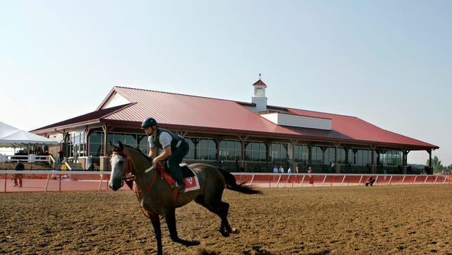 A thoroughbred trains at the Pinnacle Race Course in Huron Township, Mich., Thursday, July 17, 2008.