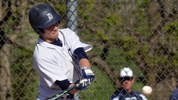 Joe Capobianco is Dallastown's leading hitter with