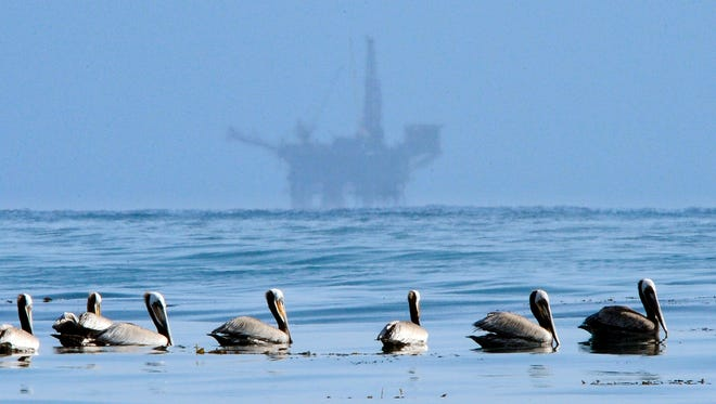In this May 13, 2010, file photo, pelicans float on the water with an offshore oil platform in the background in the Santa Barbara Channel off the coast of Santa Barbara.