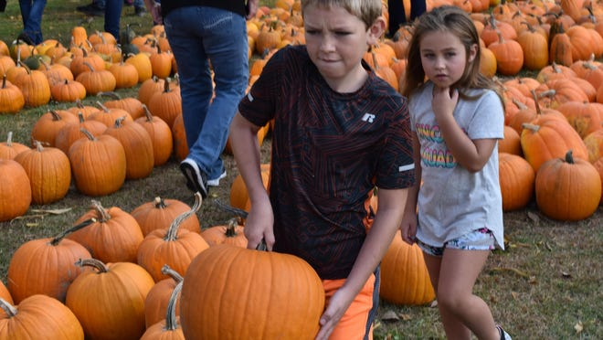 A brother and sister carry away their pumpkin from the Sarah Haylett-Jones Memorial Fall Harvest Fundraiser Saturday.