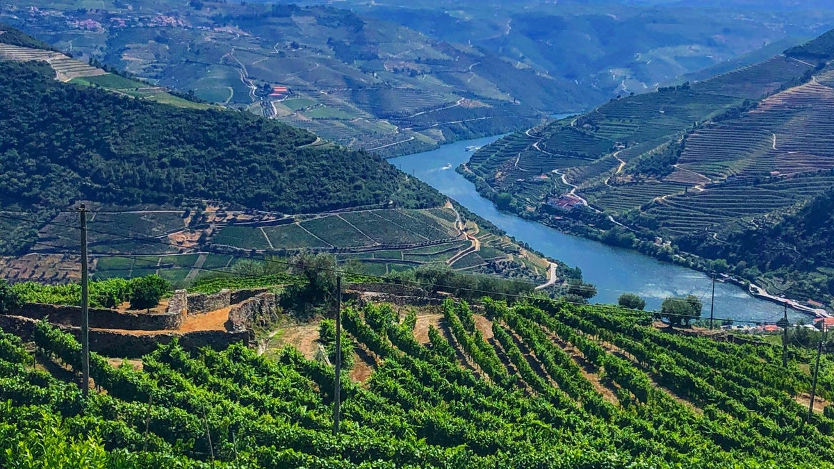 Portugal's port wine country can be best explored by boat