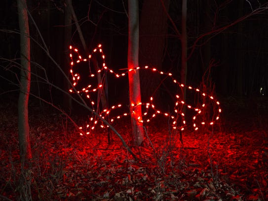 Light Show Raises Funds For Manitowoc Zoo