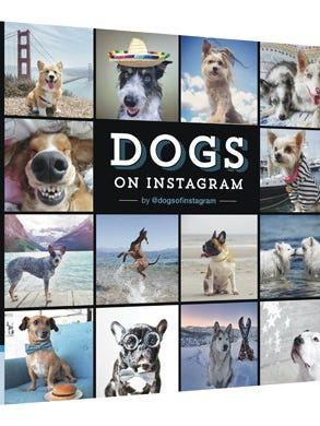 """""""Dogs on Instagram"""" by Ahmed El Shourbagy; Chronicle Books, ($16.95)"""