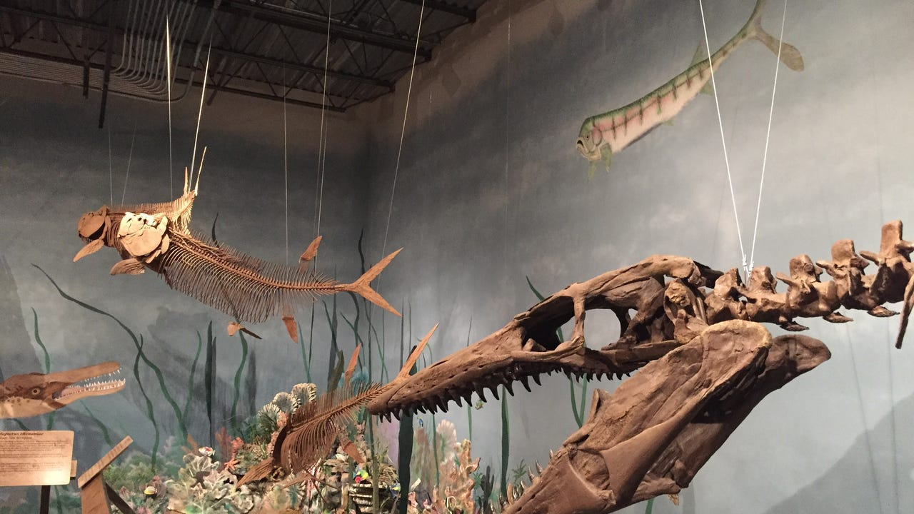 The second largest dinosaur museum in Montana, the Glendive museum has a creationist perspective.