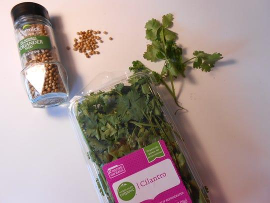 Coriander and cilantro